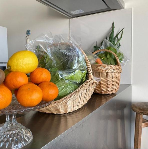 管理人さんが作った有機野菜とフルーツたち