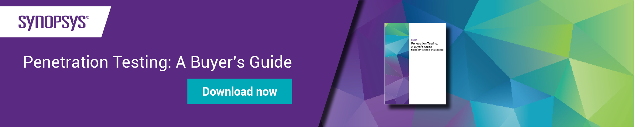 Penetration testing: A Buyer's Guide | Synopsys