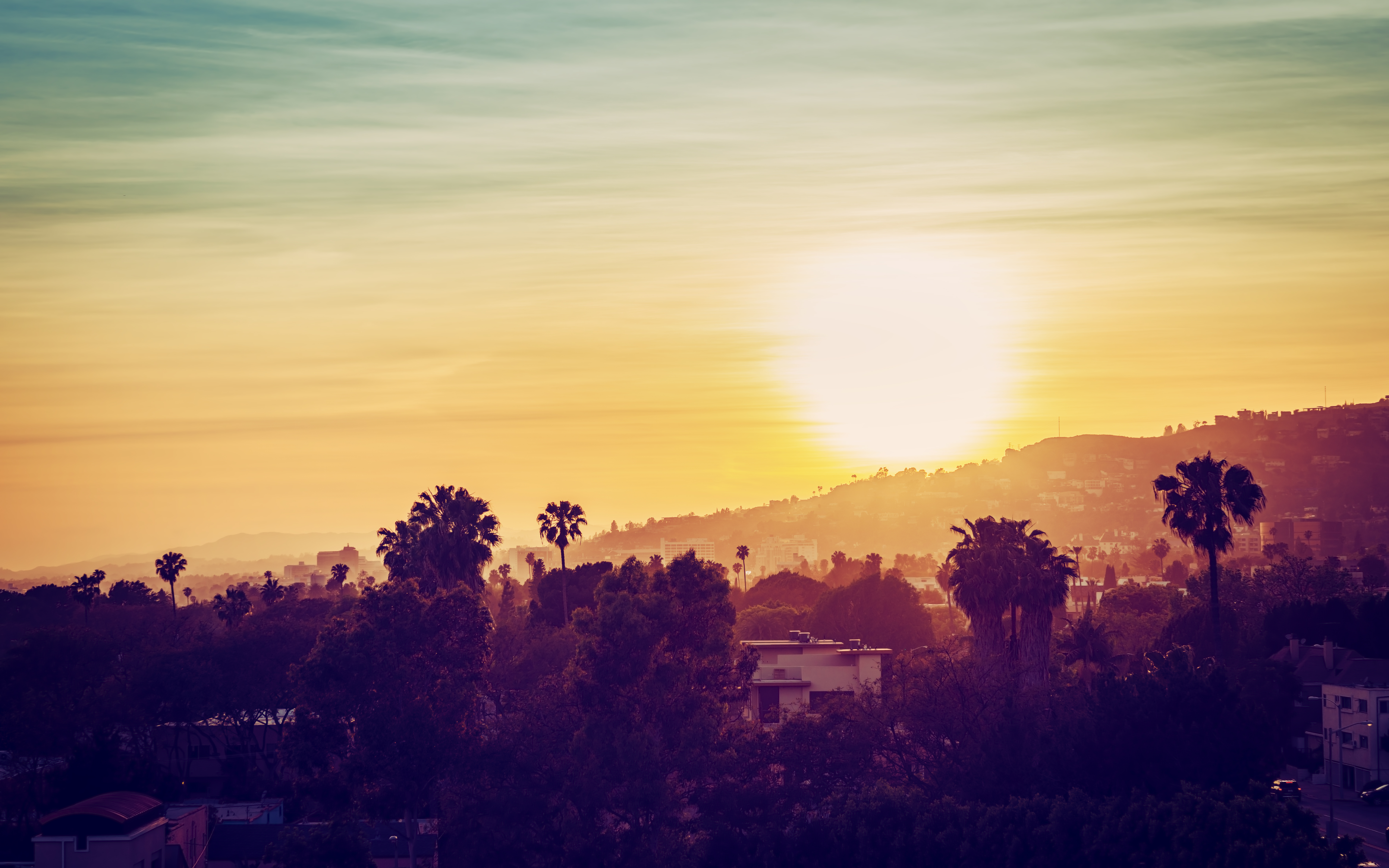 Los Angeles mountains with palm trees at sunset
