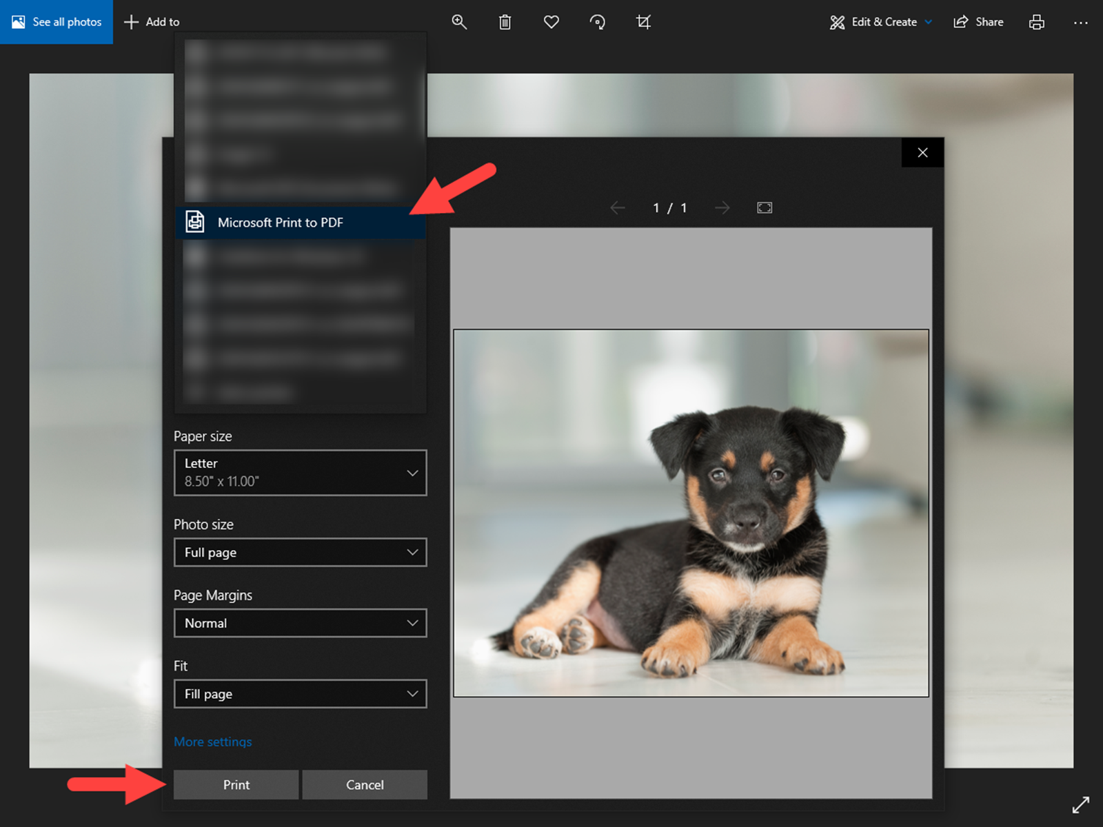 """Selecting """"Microsoft Print to PDF"""" to convert a JPG image file extension to a PDF file extension on a PC"""