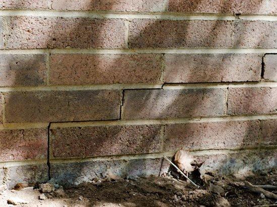 cracked-wall-ram-jack-systems-distribution-llc_75564.jpg