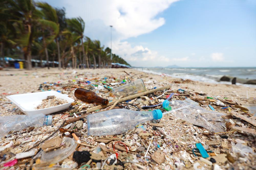 海洋 プラスチック 問題 1.jpg