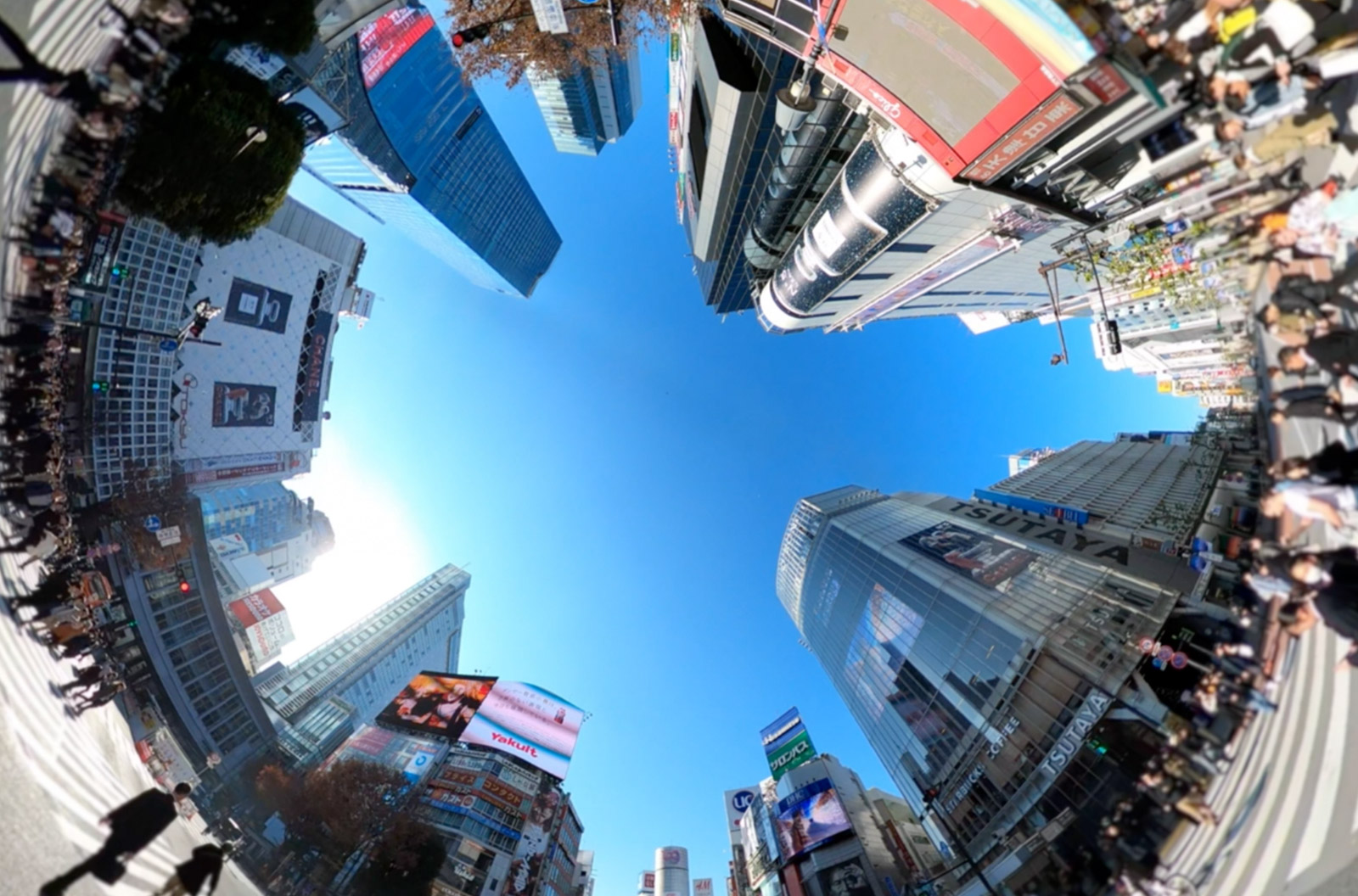 360 degree video showing walking on Shibuya Crossing in Japan