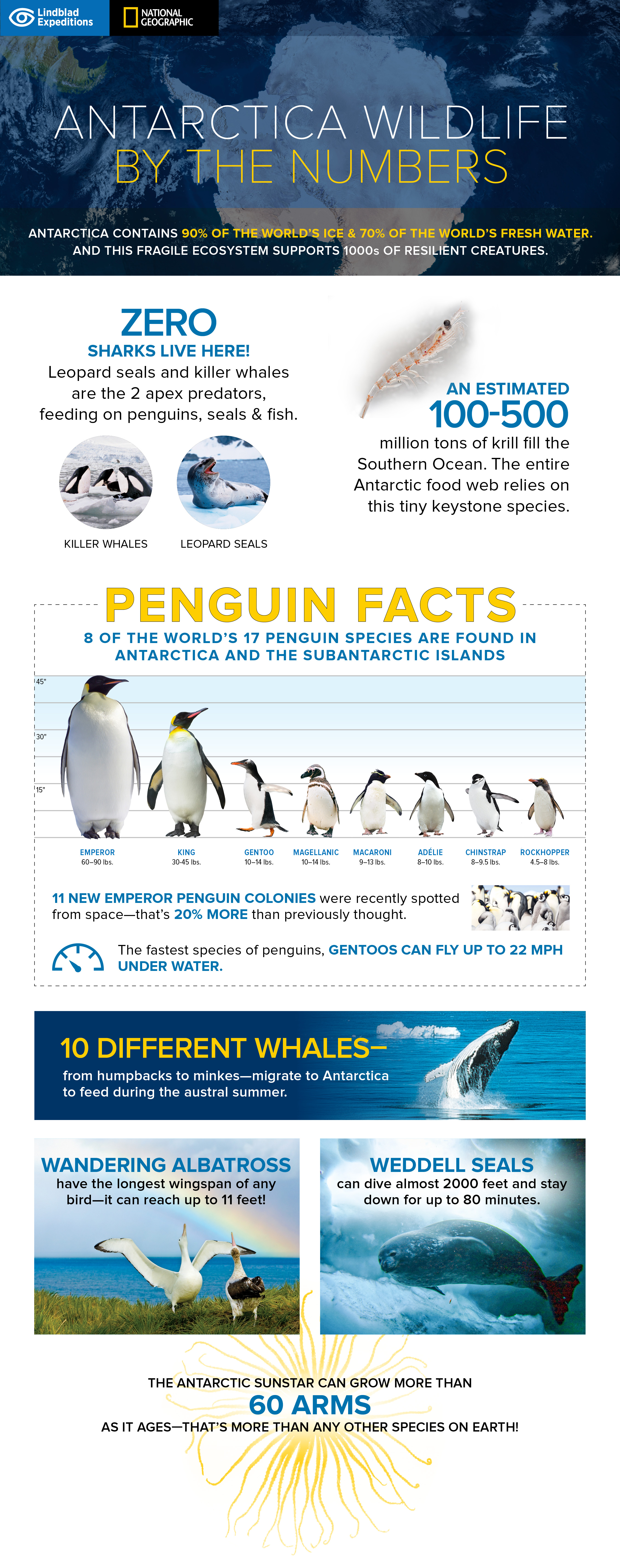 Antarctica_Infographic.jpg