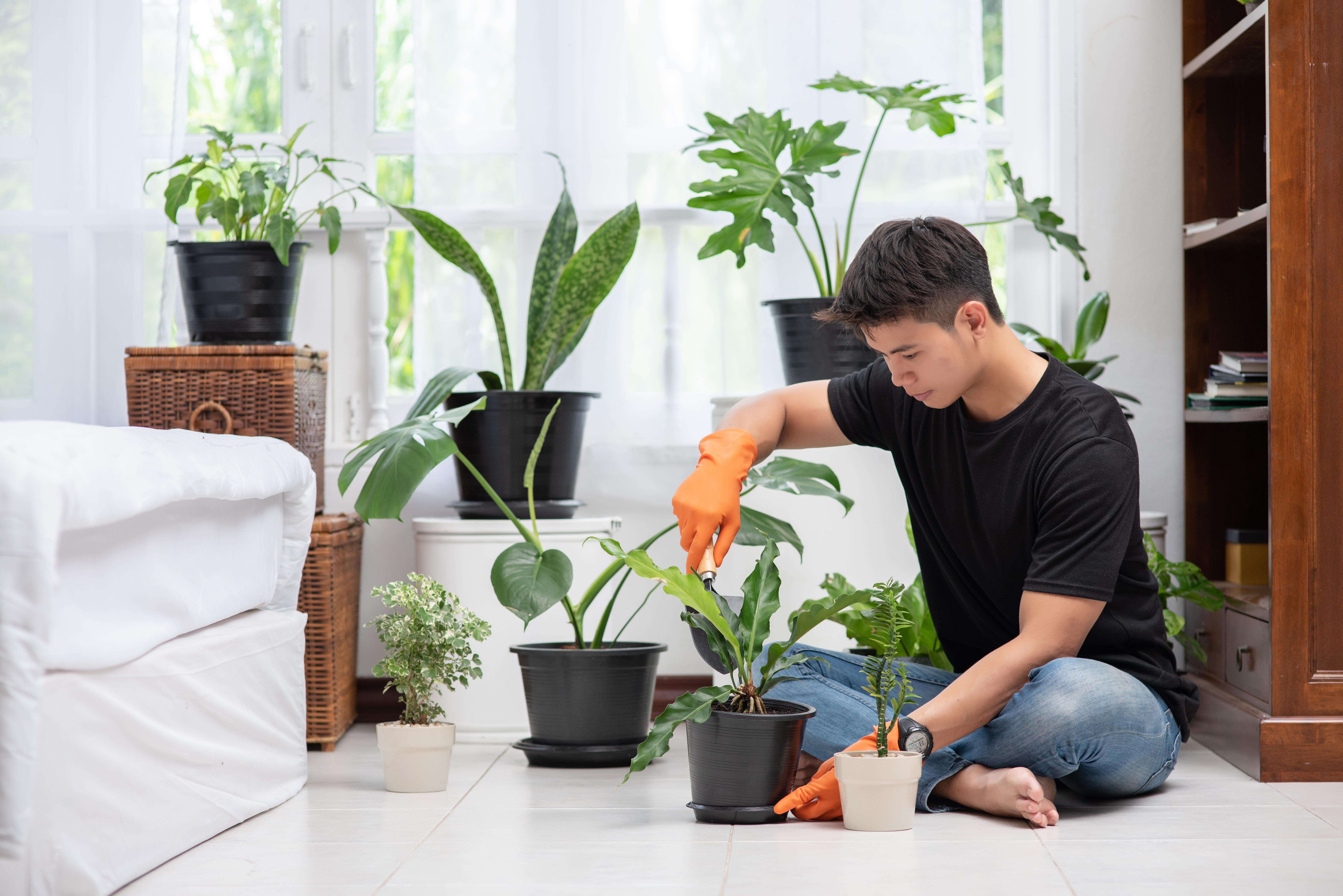 men-wearing-orange-gloves-planting-trees-indoors.jpg