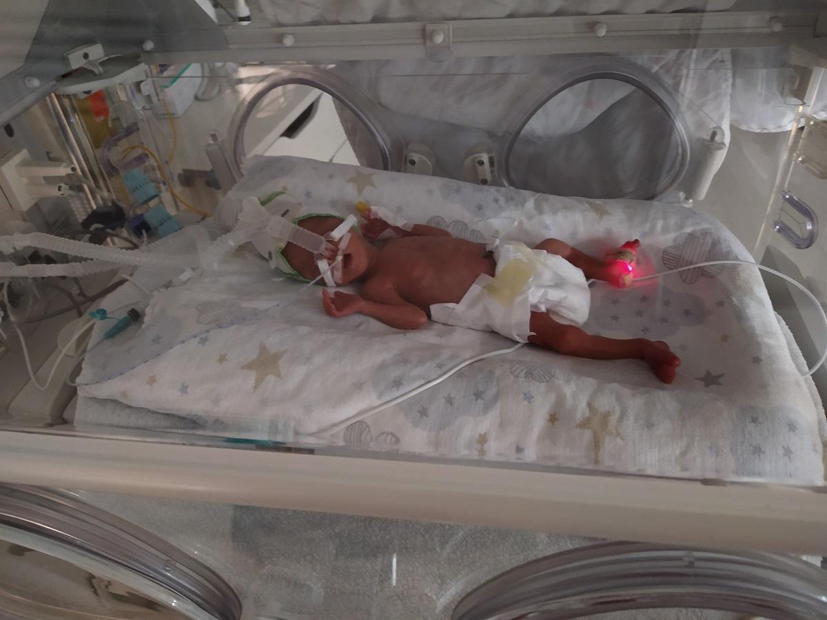 GE Healthcare Giraffe OmniBed incubator warmer
