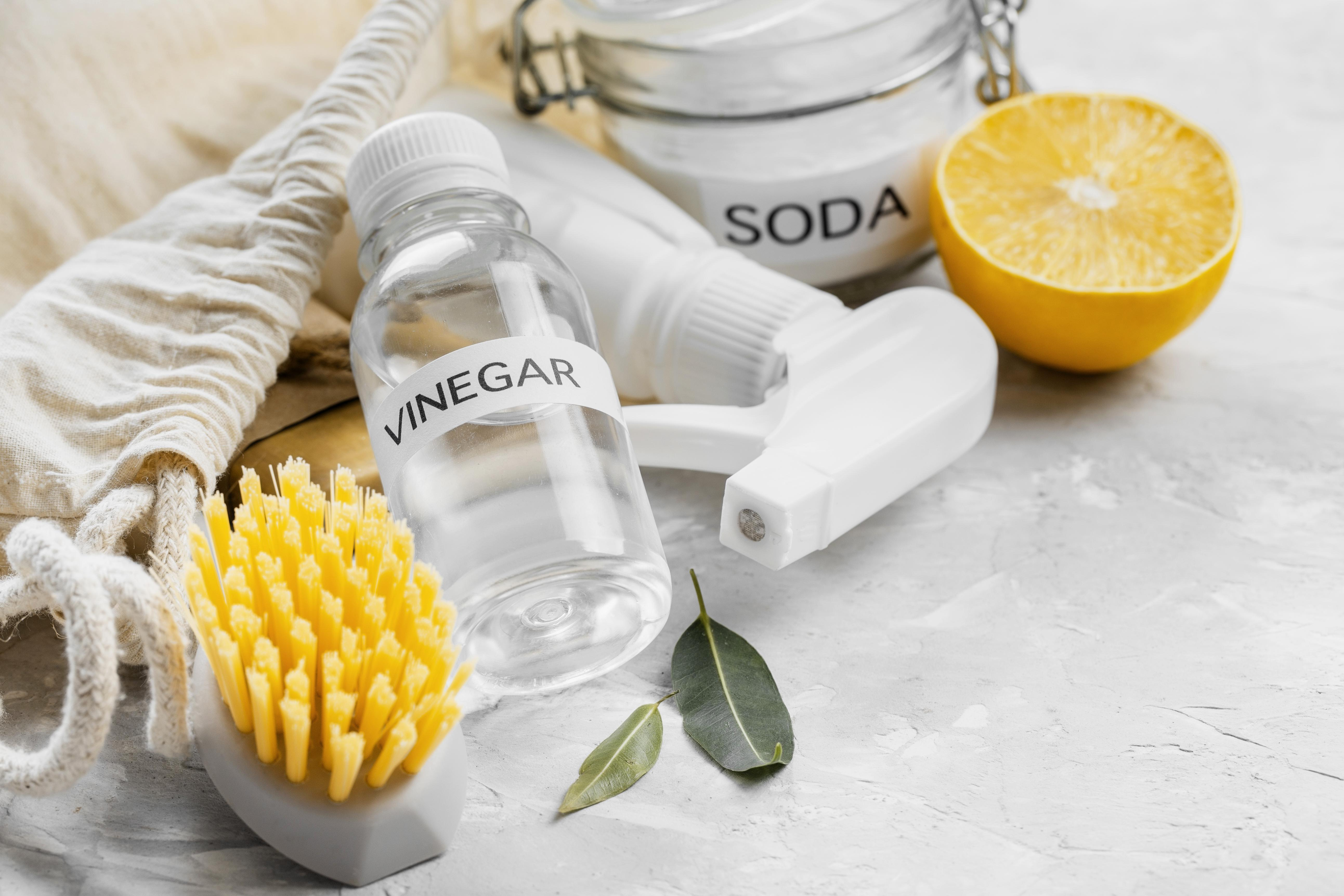 high-angle-eco-friendly-cleaning-brushes-with-vinegar-lemon.jpg