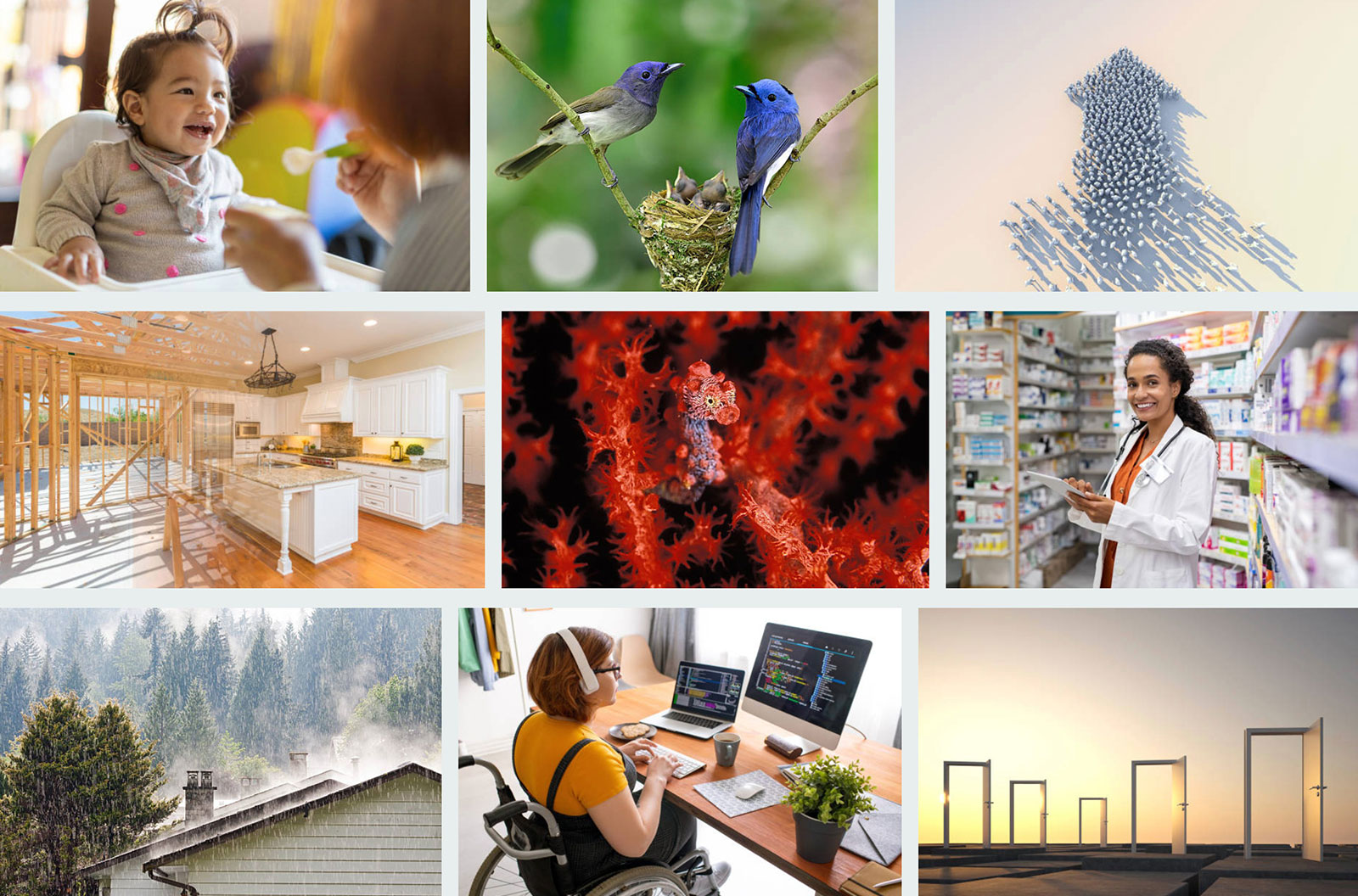 "Snapshot of iStock board titled ""Images we Love"""
