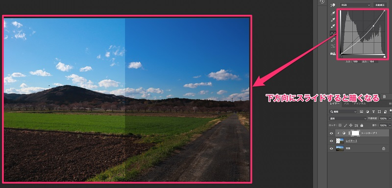 右半分を暗く色調補正した画像