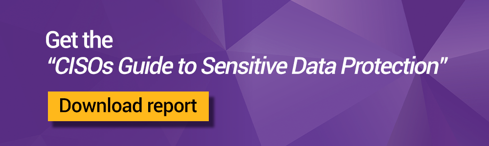 CISOs guide to sensitive data protection white paper | Synopsys