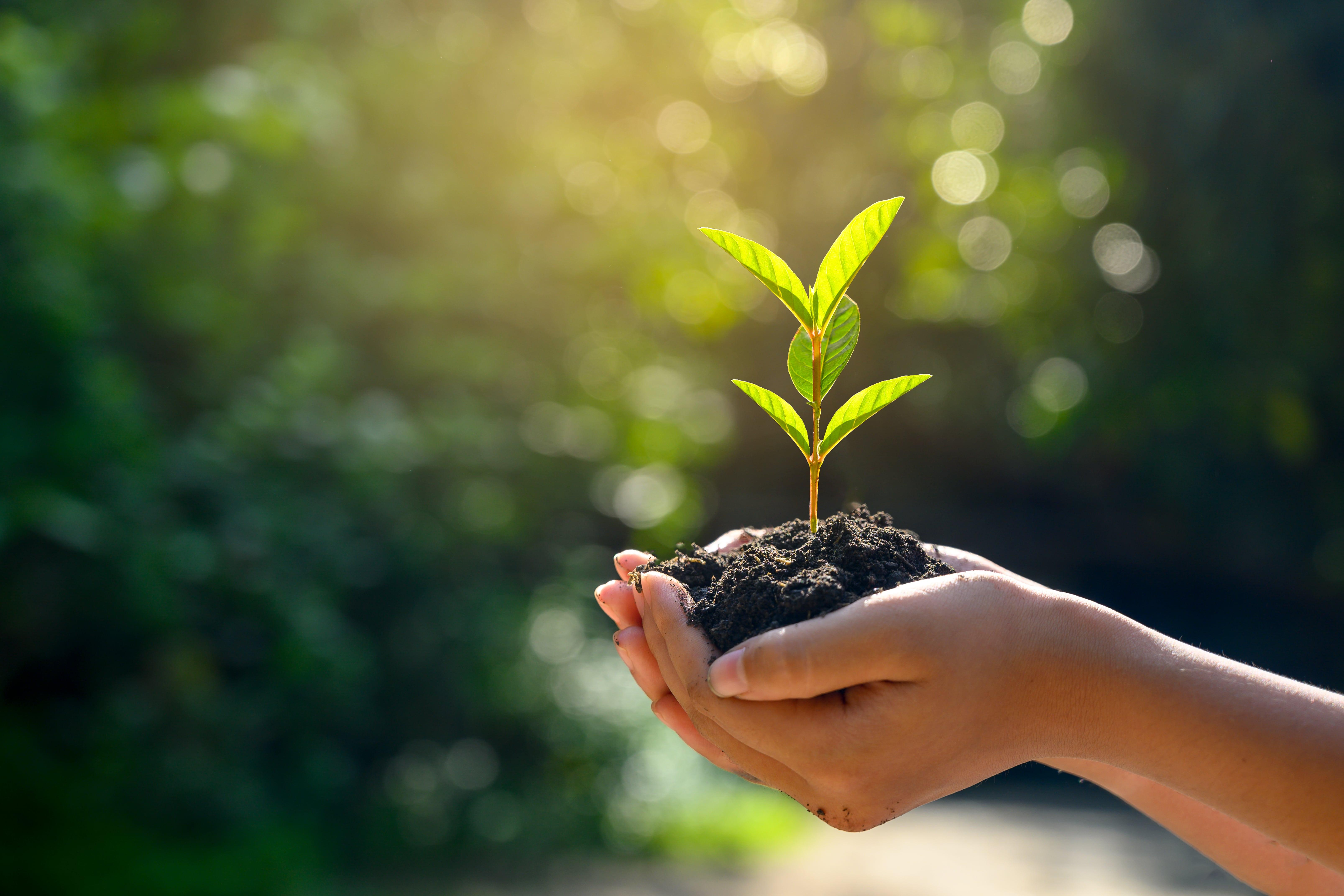GreenPurchasingGuidelines_image01-min.jpg